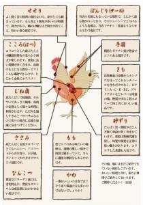 head_menu11_bui